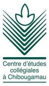 L'anglicisation du système scolaire de langue française se poursuit